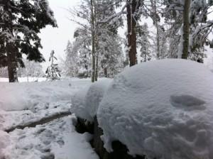 Deep Tahoe Powder