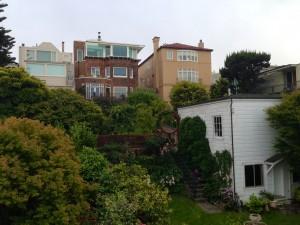 SF Property Backyard