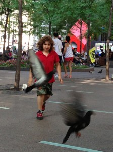 Kid chasing pigeons