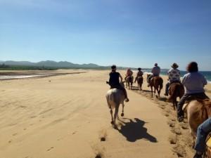 Backdoor Roth IRA - Horseback riding