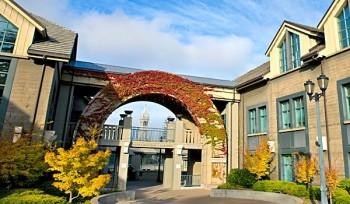UC Berkeley Haas School of Business MBA