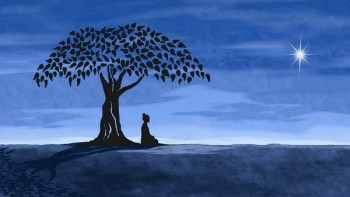 Type A Or Type B? Meditation Under Bodhi Tree