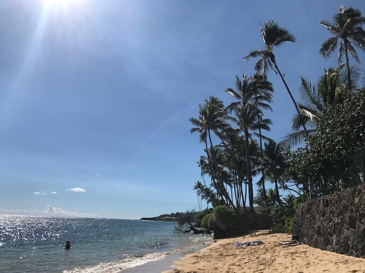 The Hawaiian Hustle