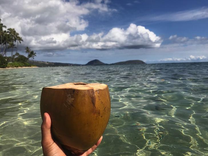 Coconut achieved