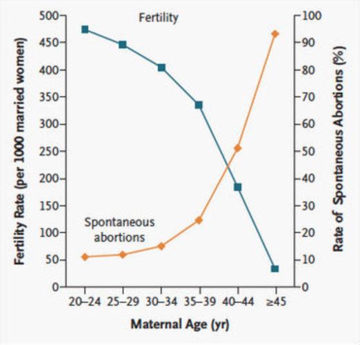 Schéma plodnosti