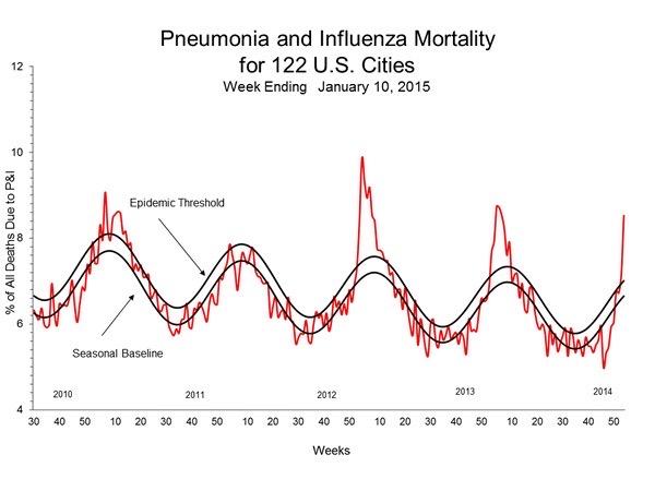 Flu and pneumonia mortality cycle