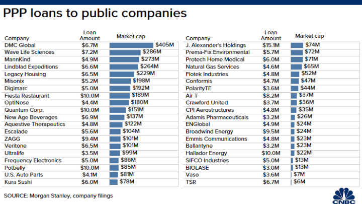 Public companies getting PPP